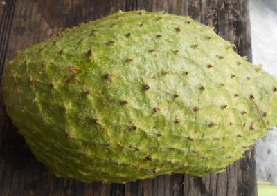Soursop Fruit Grenada